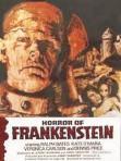 horror-of-frankenstein